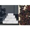GRACCIOZA Mabel Hand Towel 18X30