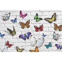 FLUTTER PLACEMENT 24 PCS