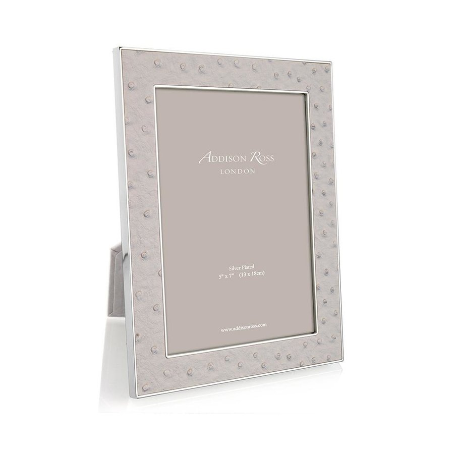 Mist Ostrich & Silver Frame 5x7