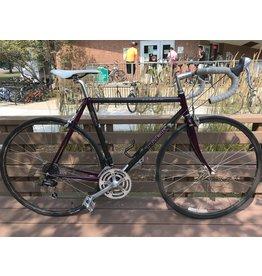 Trek 2120 Carbon road bike 54 cm purple