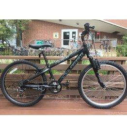 Trek MT220 mountain bike, 12 in, 24 in wheels, WTU209P028B