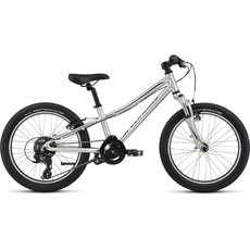 Specialized HTRK 20 INT LTSiL/Blk
