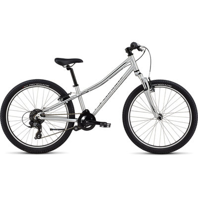 Specialized HTRK 24Int LtSil/Blk 11