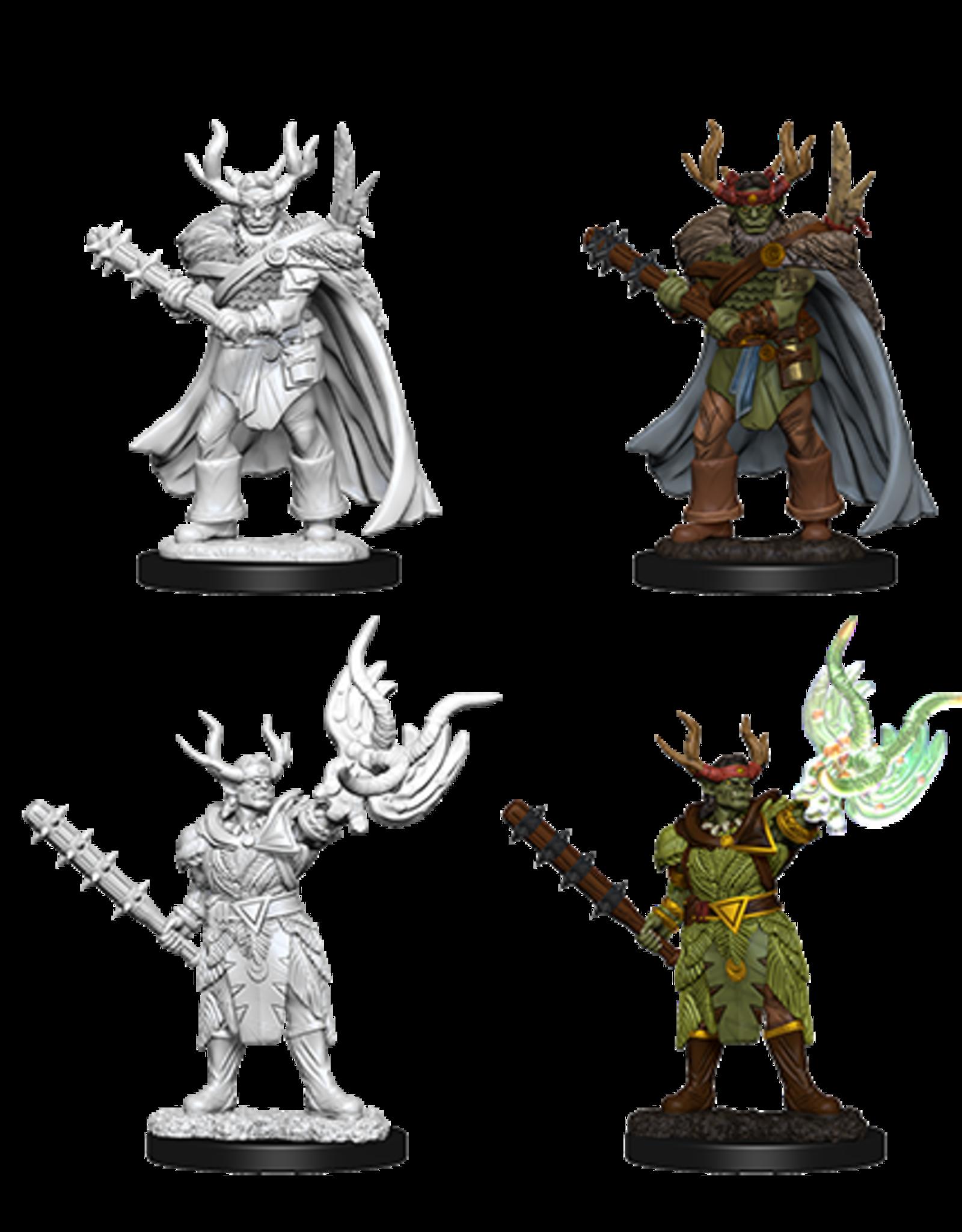 Wizkids Pathfinder Deep Cuts: Male Half-Orc Druid