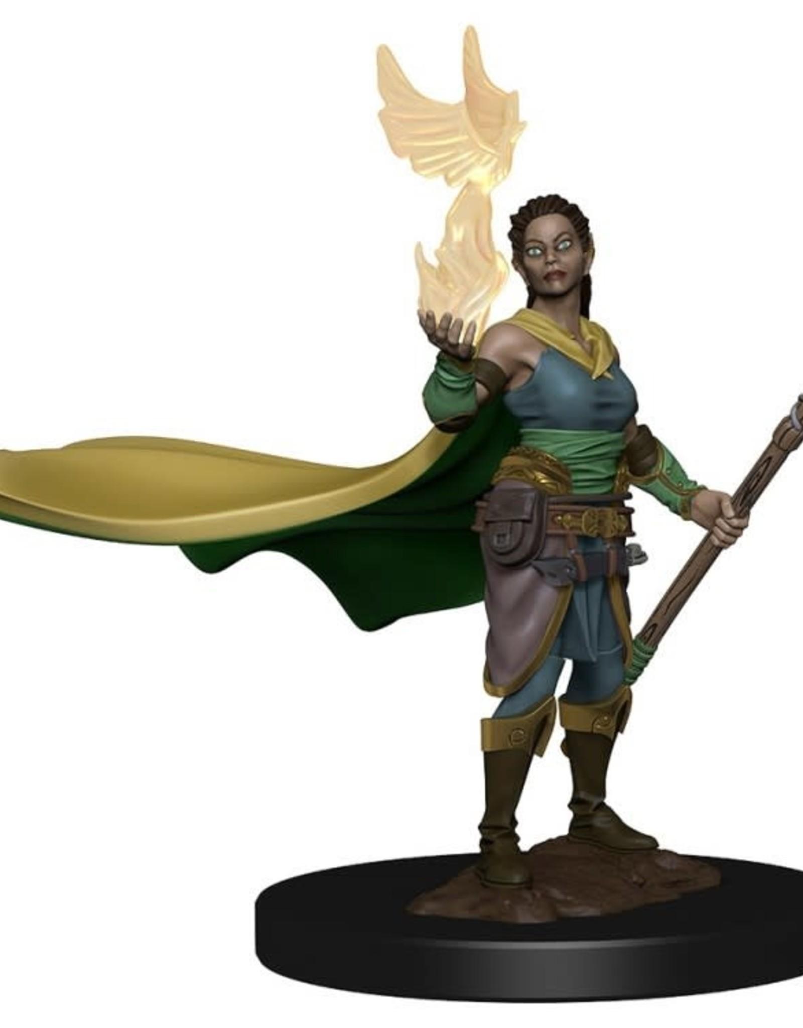 Wizkids Wizkids Premium Figurines: Elf Druid