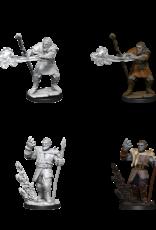 Wizkids D&D NM Primed Mini:  Male Firbolg Druid