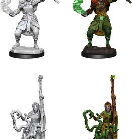 Wizkids D&D Mini: NM Primed: Firbolg Female Druid