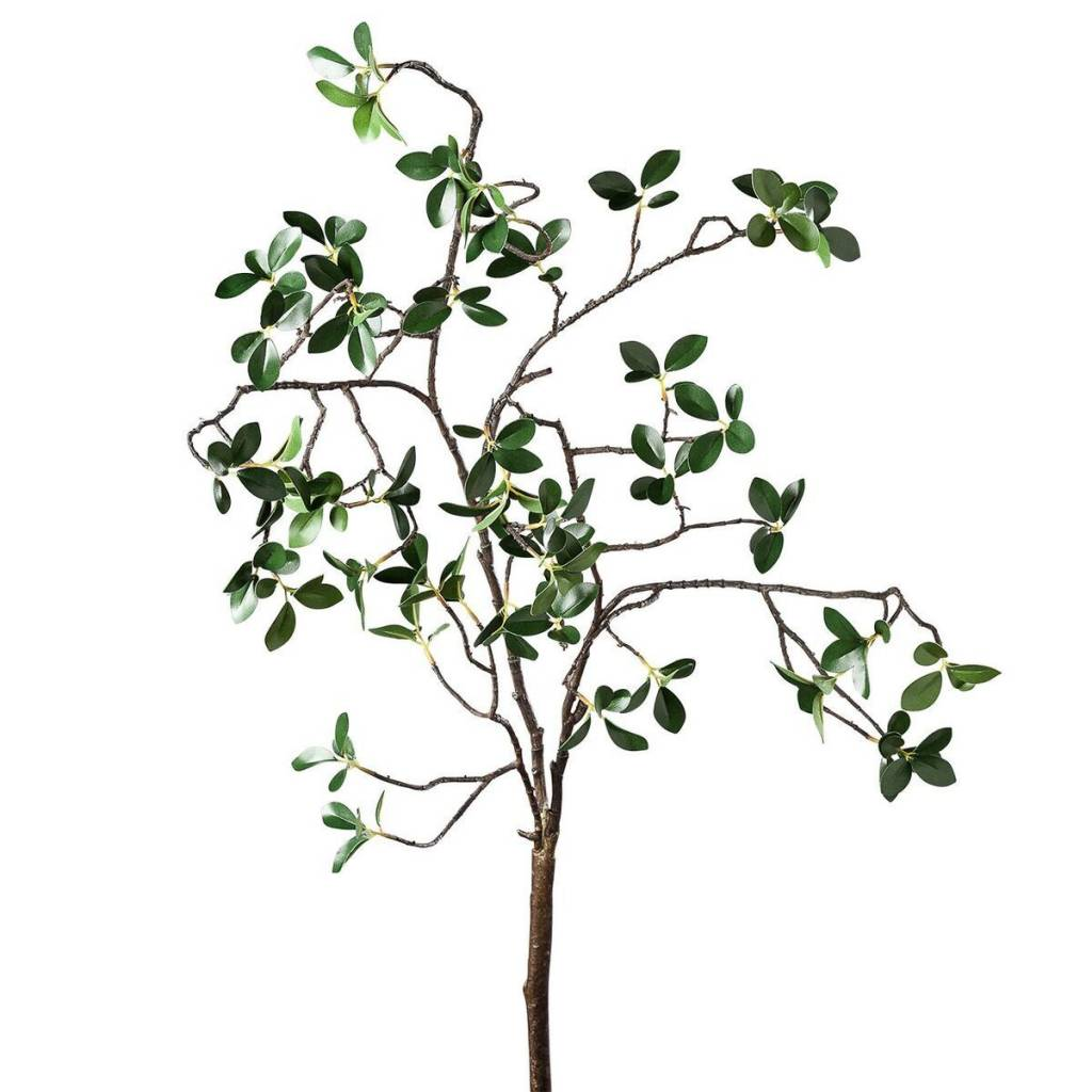 "Torre & Tagus Grove Mini Leaf 44"" Branch Spray"