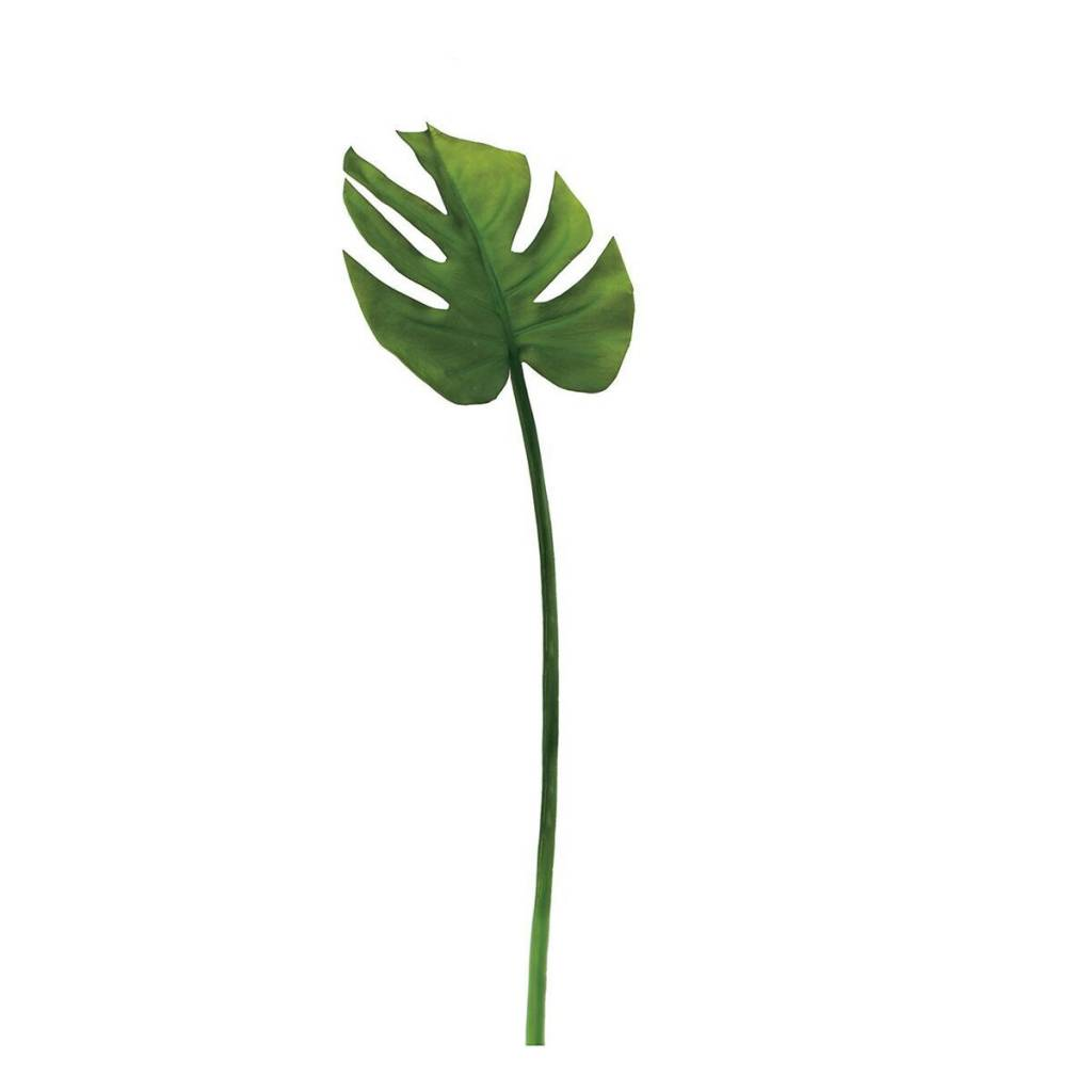 "Torre & Tagus Monstera Leaf 23"" Stem"