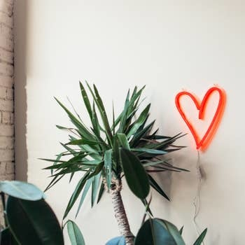 Amped Heart Wall Light