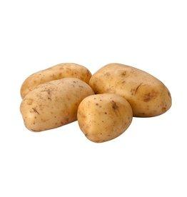 Yukon Gold Yukon Gold Potatoes, 5 lb, 10 ct