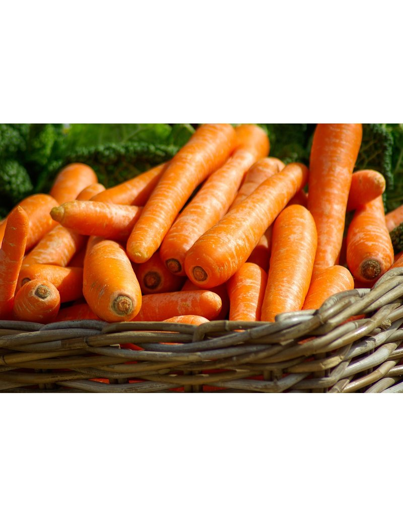 Sysco Fresh Jumbo Carrots, 5 lbs