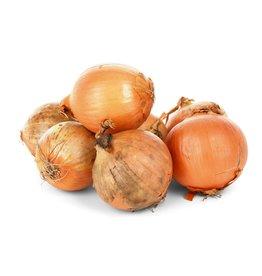 Sysco Fresh Jumbo Yellow Onions, 5 lbs.