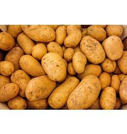 Yukon Gold Potato Yukon Gold, 5 lb
