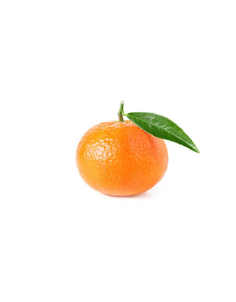 Mandarin Bee Sweet Clementine, 3 lb