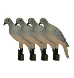 Mojo Decoys MoJo Clip On Dove - Set of 4