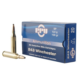 TR & Z USA PPU  .243 Win 100 Gr SP - 20 Count