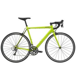 Cannondale BIKES 2020 CANNONDALE CAAD OPTIMO CLARIS (PREVIEW)