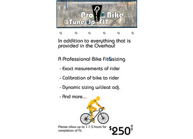 Pro Tune Up w/Bike FIT