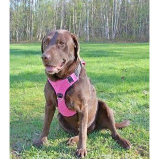 Bay Dog Bay Dog - Pink XLarge Harness