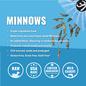 Vital Essentials Vital Essentials - Minnows Dog Treats 1oz