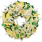 K9 Granola - The Leprechaun Donut