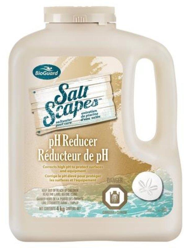 BioGuard SaltScapes® pH Reducer (4 kg)