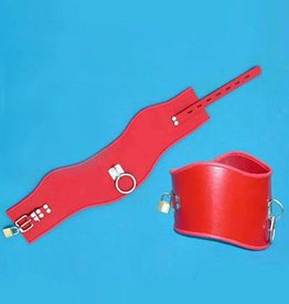 SMT Locking Posture Collar Red