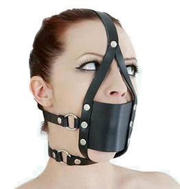 SMT Rubber Ball Gag With Head Harness