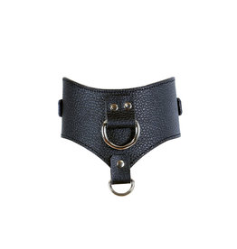 FPL Posture Collar with Double D Ring