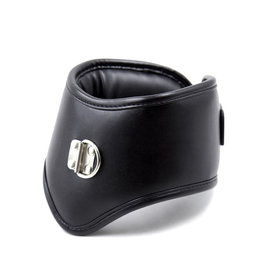 SMT Faux Leather Padded Posture Collar