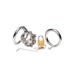 ECN Master Series Bolted Chastity Cock Cage With Spikes Cockring Metal