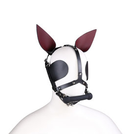 SMT Pony Head Harness with Gag & Blinders Black O/S