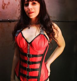 CLR Buckle Front Corset Underwire Cups And Straps