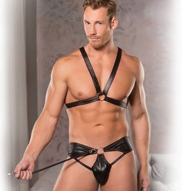 AL Fearless Wetlook Harness With Leash