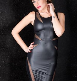 CLR Wetlook And Sheer Dress