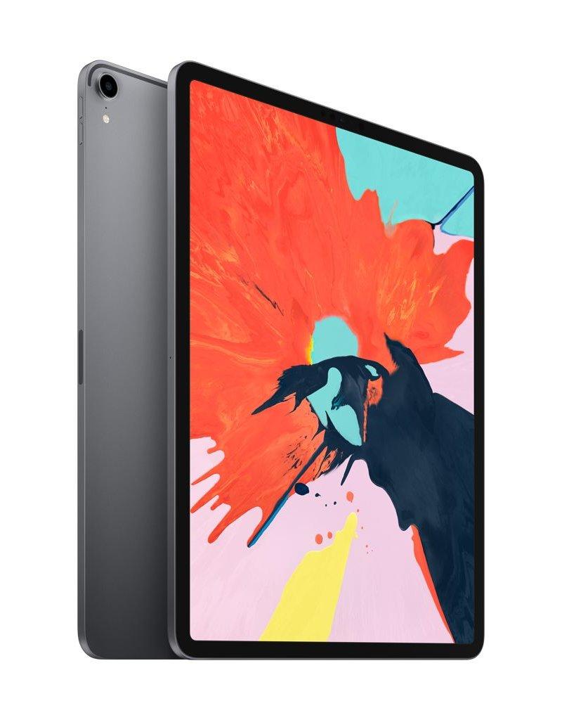 12.9-inch iPad Pro Wi-Fi 256GB - Space Gray
