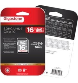 Dane Electric Gigastone Secure Digital HC Card - 16GB