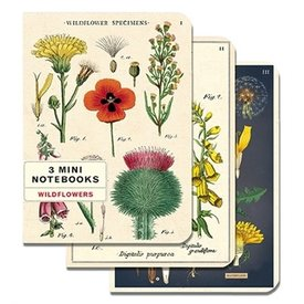 Cavallini Mini Notebooks - Wildflowers