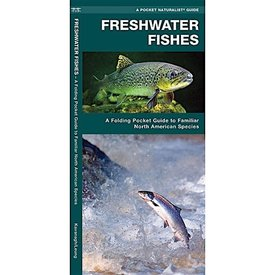 A Pocket Naturalist Guide - Freshwater Fishes