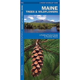 A Pocket Naturalist Guide - Maine Trees & Wildflowers