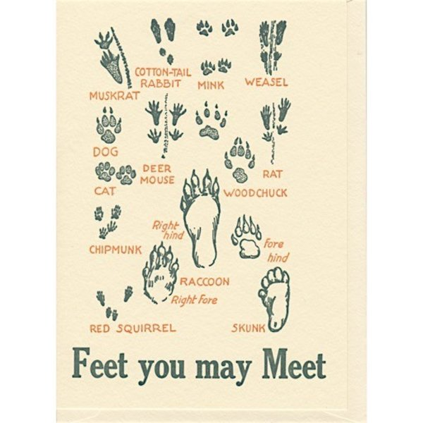 Saturn Press Feet You May Meet Card