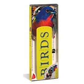 Fandex - Birds