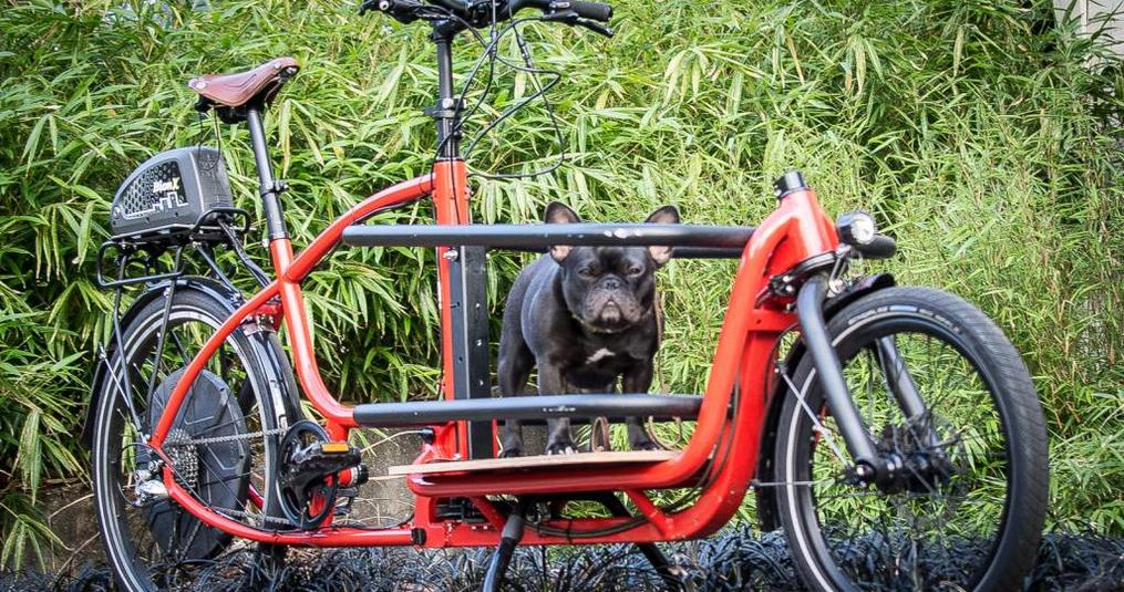 Douze Cargo Bike