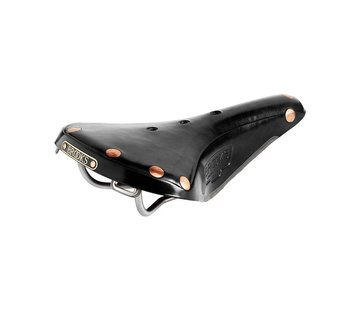 Brooks Brooks B17 Special Leather Saddle, Titanium