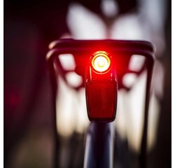 PDW PDW Radbot 1000 Tail Light