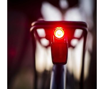 PDW PDW Radbot 1000 Tail Light
