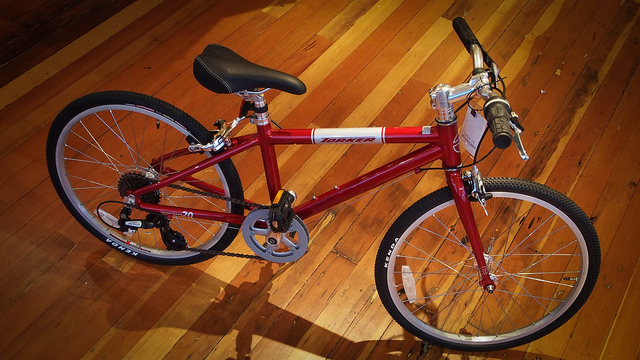 Red Torker Interurban Kids' Bike