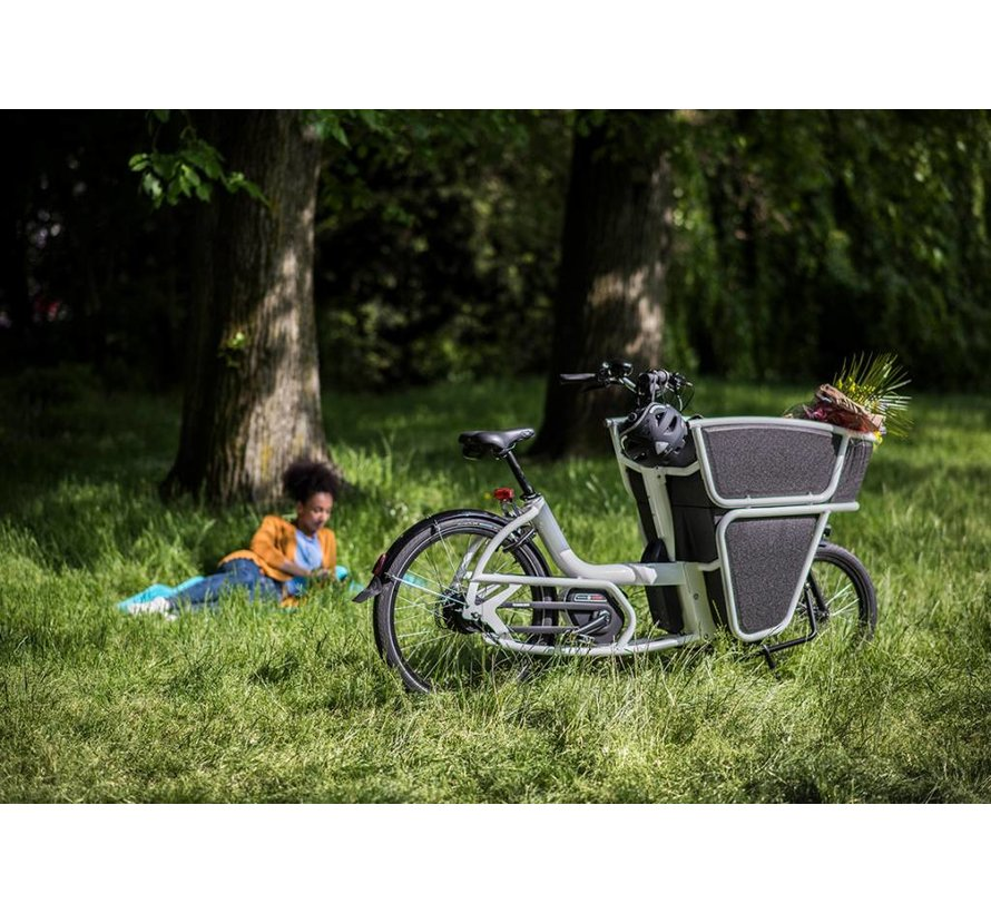 Urban Arrow Shorty Electric Cargo Bike EPP Box