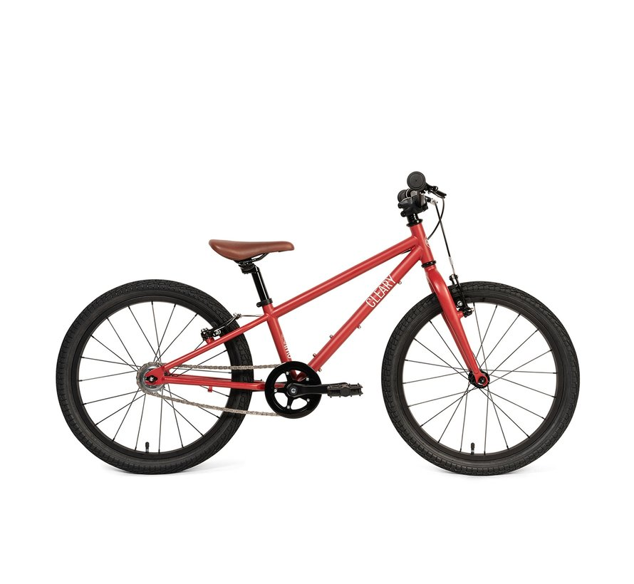 Cleary Owl Single-Speed 20-Inch Kids' Bike